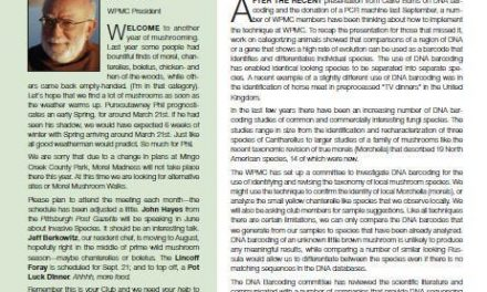 March-April 2013 newsletter published