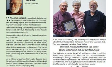 May-June 2013 newsletter published
