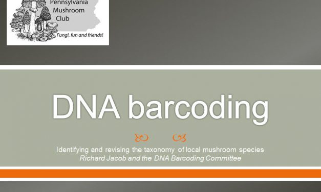 Introduction to DNA Barcoding talk