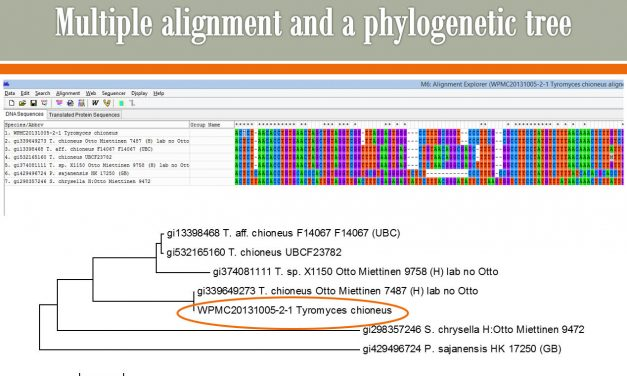 DNA Sequence results from Duke – part 1