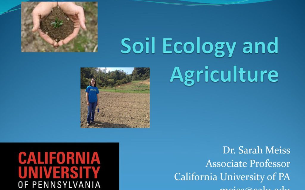 Soil Ecology and Agriculture