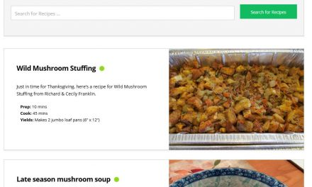 Introducing the new recipe section and our first recipe: Wild Mushroom Stuffing
