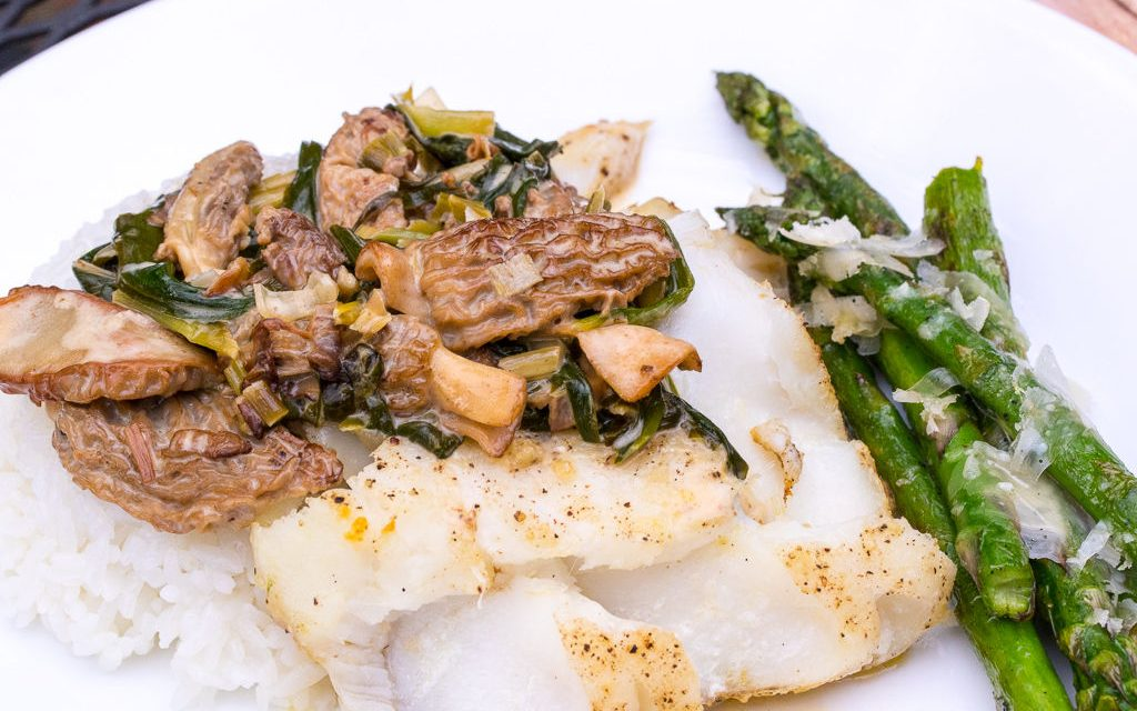 Fish with morel and ramp cream sauce