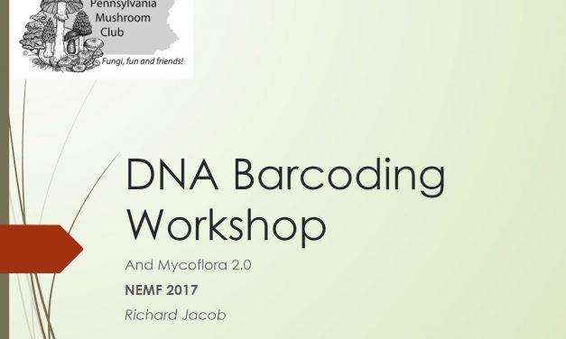 DNA Barcoding workshop presented at NEMF 2017
