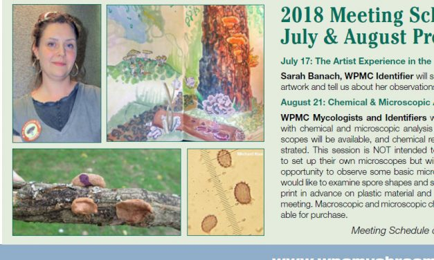 July-August newsletter published.