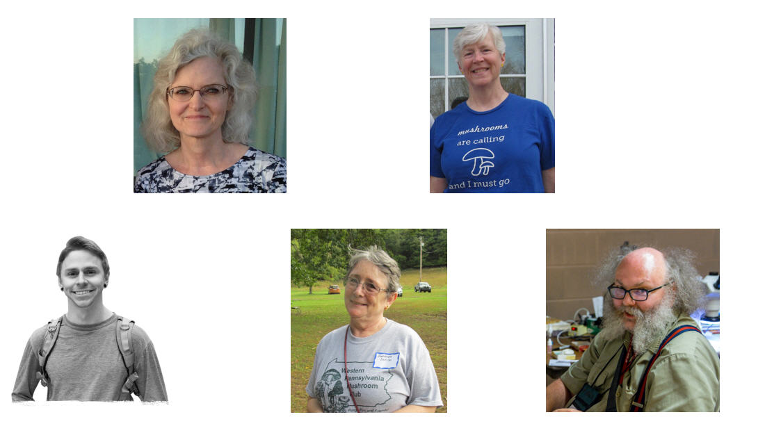 Election results for the 2019 Board of Directors