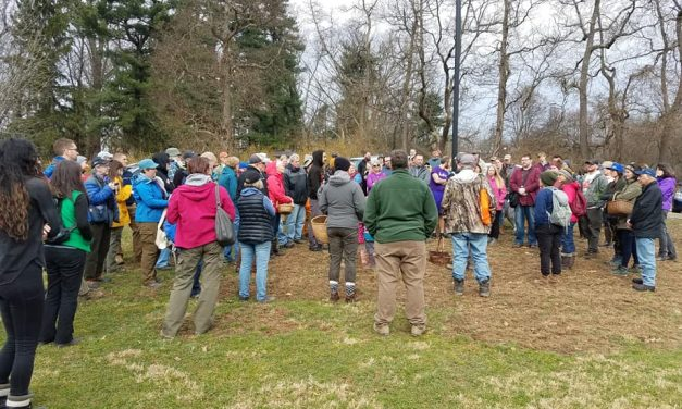 Species list from Hartwood Acres on 03/30/2019