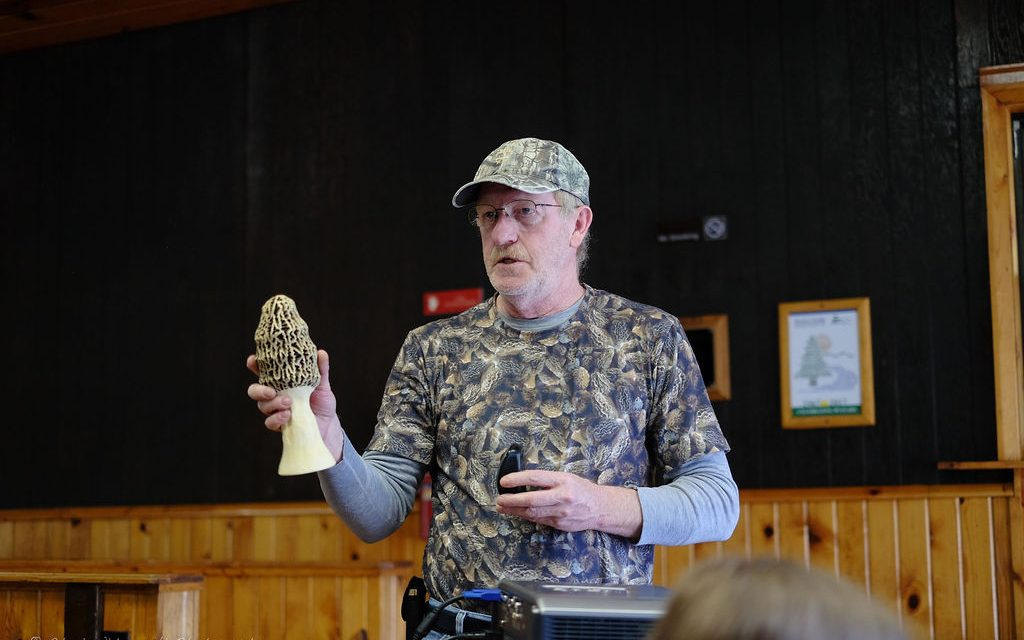 Pictures from Morel talk and walk at Pine Ridge Park (with Indiana County Friends of the Parks)