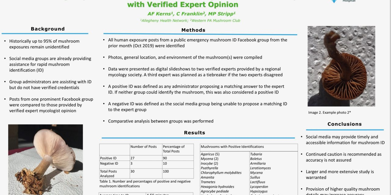 Emergency Mushroom Identification through Social Media: Comparison with Verified Expert Opinion