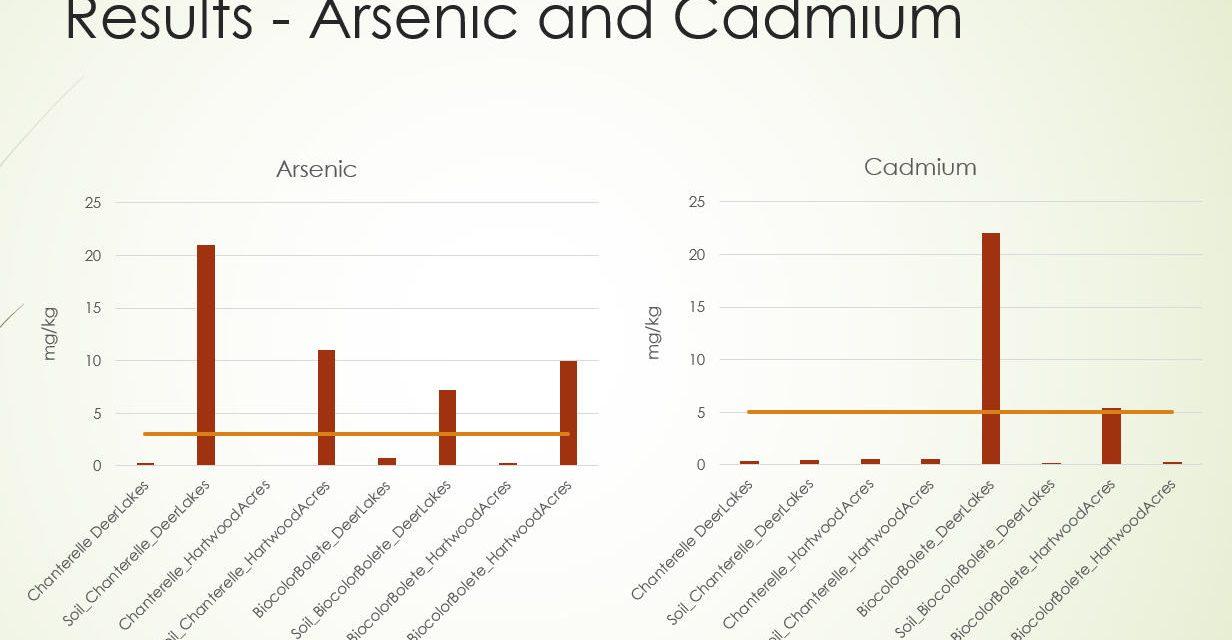 May meeting online: Heavy Metal Contamination in Edible Mushrooms