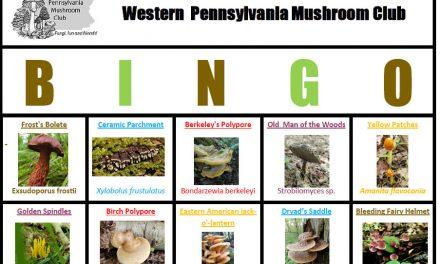 WPMC Summer Mushroom BINGO 2020