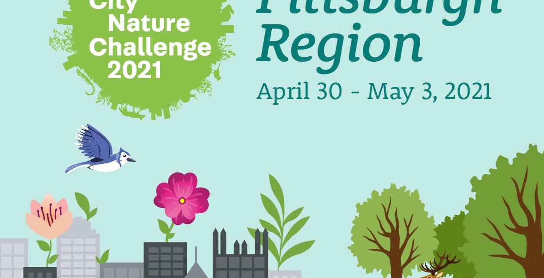 2021 Pittsburgh City Nature challenge starts today!