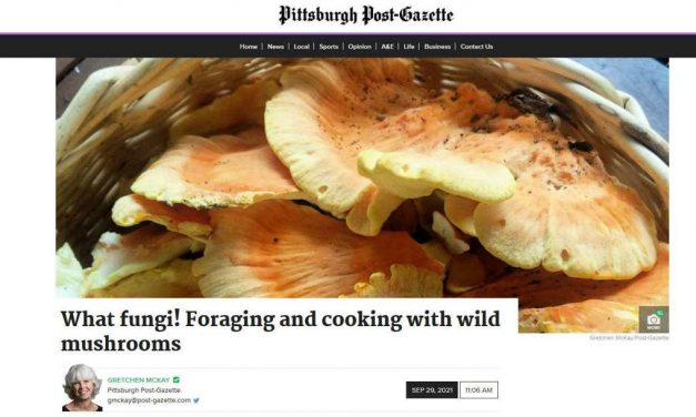 What fungi! Foraging and cooking with wild mushrooms
