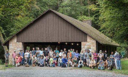 Species list from Cook Forest State Park on 09/17/2021